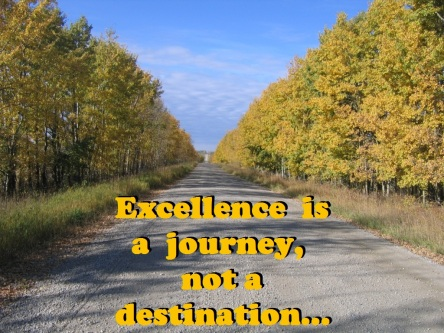 Excellence journey